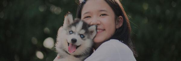 Animals-for-Adoption-Banner-NEW