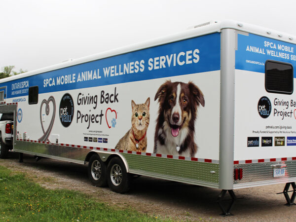 mobile animal wellness services unit