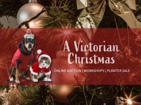 BMR-Midland-VictorianXmas-Gallery
