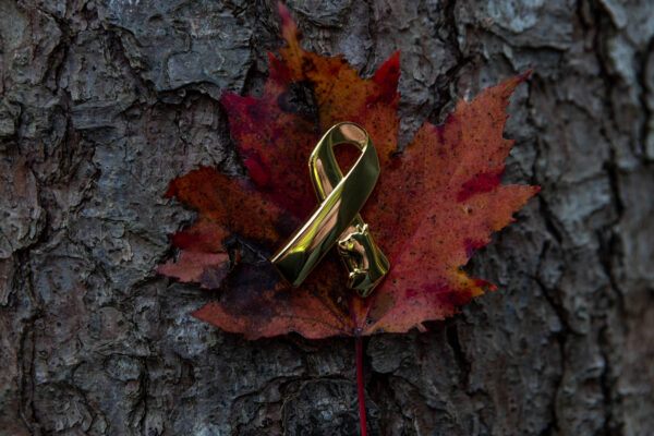 animals in war, remembrance day, animals in war pin